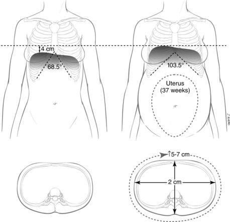 Mudanças no corpo da gestante
