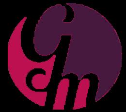 logo vip